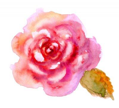 Obraz Vintage akvarel jasně červená růže