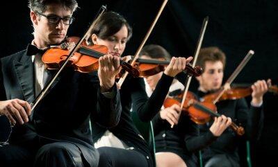Obraz Violin Orchestra, interpretuje