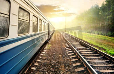 Obraz Vlak pohybující se přes borový les při západu slunce