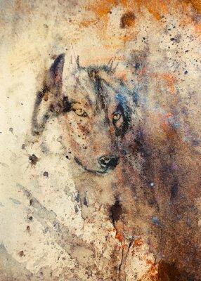 Obraz Vlk malba, abstraktní barvy vliv na pozadí