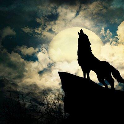 Obraz vlk silueta vytí na měsíc v úplňku