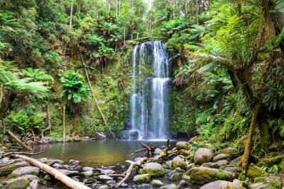 Obraz vodopád Tasmánie