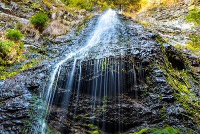 Obraz Vodopád v divokém lese
