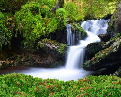 Obraz Vodopád v národním parku Šumava-Česká republika
