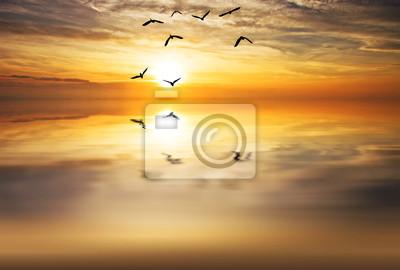 Obraz Volando hacia el sol