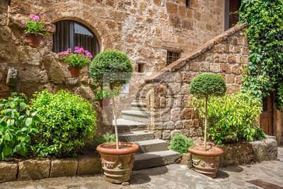 Vstup Kámen na starobylém domě plném rostlin