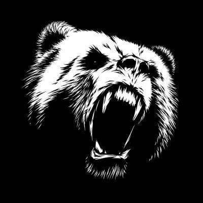 Obraz vyrýt medvěd ilustrační