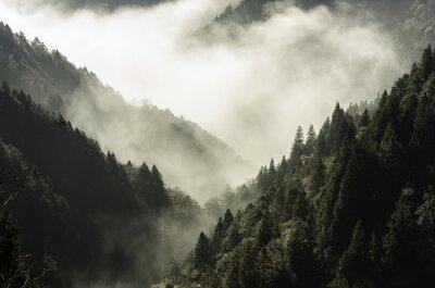 Obraz Vysoká hora v mlze a mrak