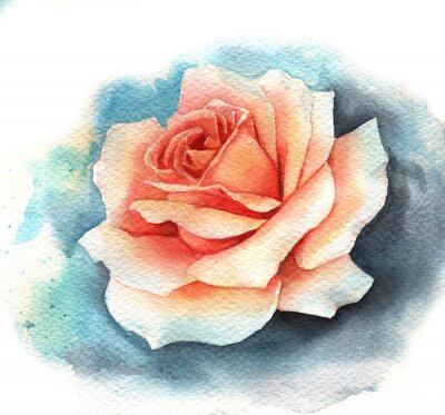 Obraz Watercolor rose