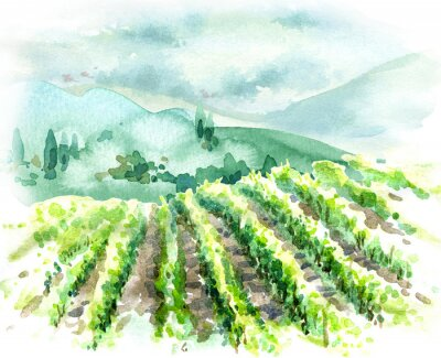 Obraz Watercolor Rural Scene with Hills, Vineyard  and Trees