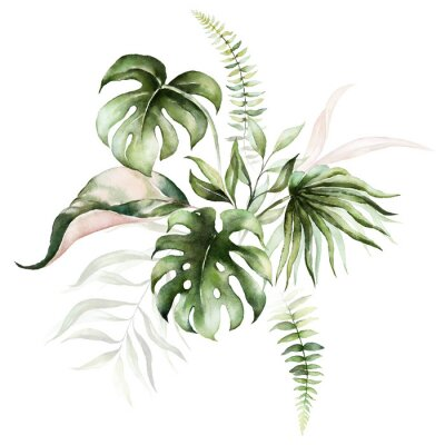 Obraz Watercolor tropical floral bouquet - green & blush leaves. For wedding stationary, greetings, wallpapers, fashion, background.