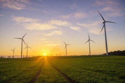 Obraz Wiatraki (Turbiny wiatrowe)