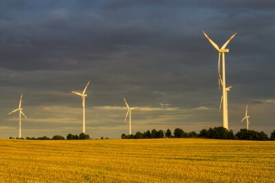 Obraz Wiatraki(turbiny wiatrowe) w świetle wschodzącego słońca