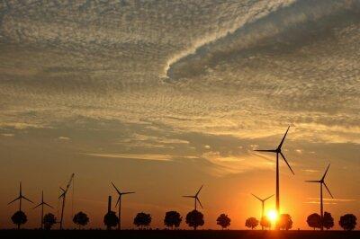 Obraz Windpark im Aufbau bei sonnenuntergang mit Cirrocumuluswolken