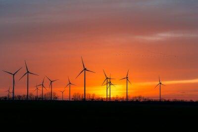 Obraz Windräder in der Natur mit vogelschwarm im Sonnenuntergang