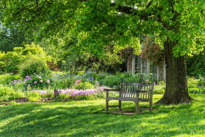 Obraz wooden bench at flower garden park