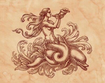 Obraz Морская богиня на дельфине, графика. Рисунок на коричневой бумаге тушью.