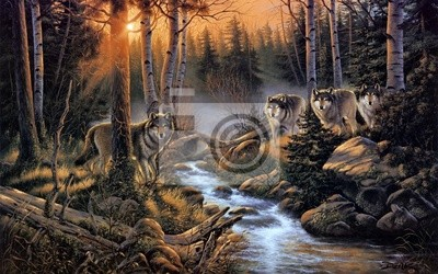 Obraz Стая волков