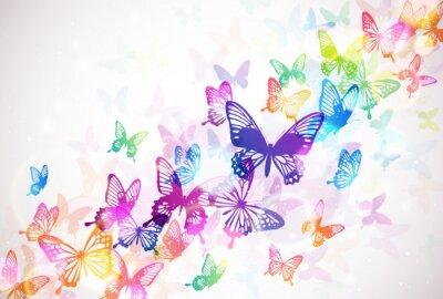 Obraz 蝶 々