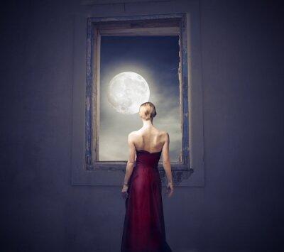 Obraz Za svitu měsíce