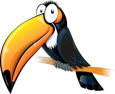 Obraz zábava tukan karikatura na bílém.