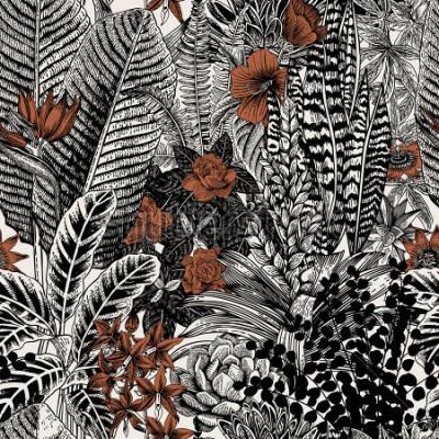 Obraz Žádné pohodlnéové ročníky vzor. Exotické květiny a rostliny. Botanické klasické ilustrace.