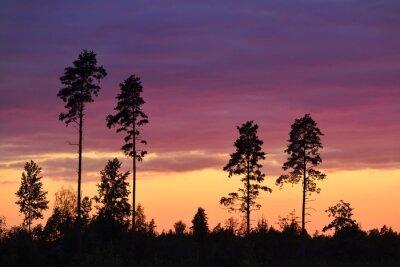Obraz Západ slunce v venkovských oblastech