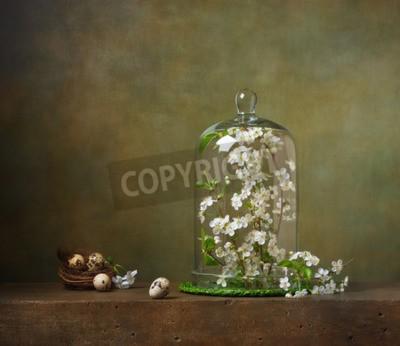 Obraz Zátiší s Cloche s pobočkami kvetoucí strom