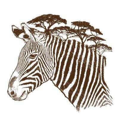 Obraz Zebra se stromem