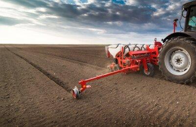 Obraz Zemědělec s traktoru setí - setí plodin v zemědělském poli na jaře