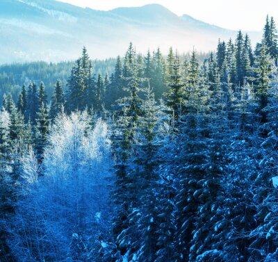 Obraz Zimní hory
