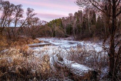 Obraz Zimní nebo jarní řeky a dřevo
