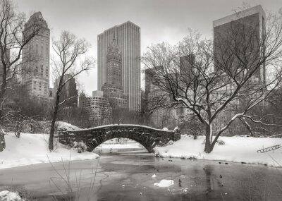 Obraz Zimní scény na Manhattanu: Rybník, Gapstow Bridge a Manhatta