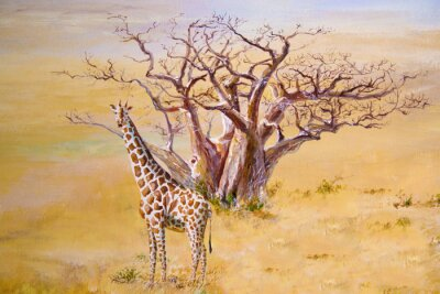 Obraz Žirafa, Keňa