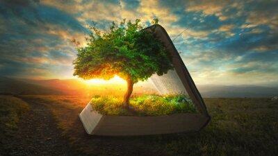 Obraz Život z Bible