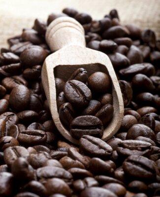 Obraz Zrnková káva