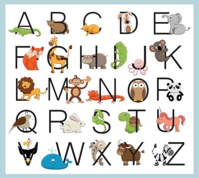 Plakát Abeceda zvířata