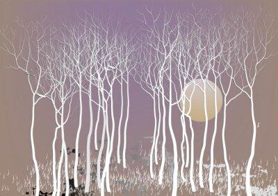 Plakát Abstraktní lesní stromy se z dovolené s měsícem nočním vidění, bílý strom