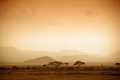 Plakát Africká savana při východu slunce
