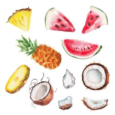 Plakát akvarel letní ovoce set