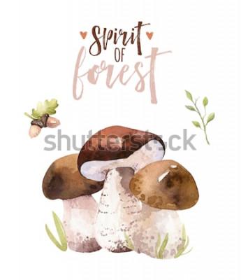 Plakát Akvarelu bohémské lesní houby sada, lesní izolované plakát amanita ilustrace, létat agaric, hřib, houby dekorace hřib oranžová čepice.