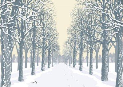 Plakát Alley s zasněžené stromy siluety v parku