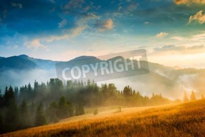 Plakát Amazing horská krajina s mlhou a kupce sena
