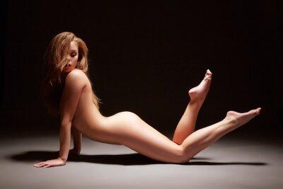 Plakát Ateliér fotografie harmonous dívka pózuje nahá
