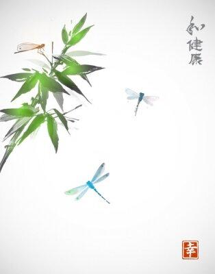 Plakát Bamboo větev a tři vážky