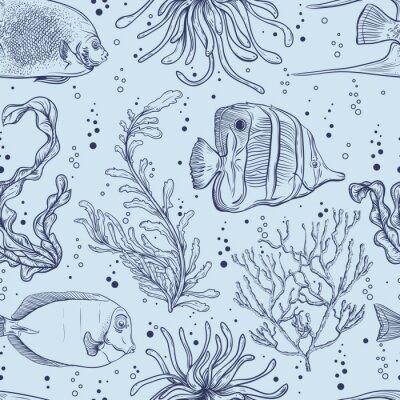 Plakát Bezešvé vzor s tropických ryb, mořských rostlin a řas. Vintage ručně kreslenými vektorové ilustrace mořský život. Design pro letní pláž, dekorace, tisk, výplní vzorkem, web povrch pozadí