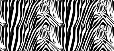 Plakát Bezešvé vzor zebra