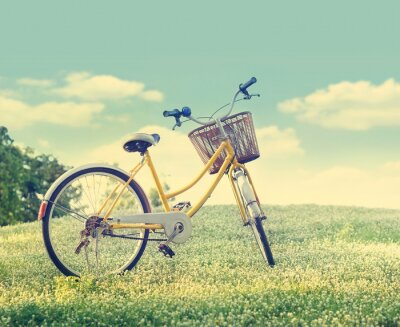 Plakát Bicycle on the white flower field and grass in sunshine nature background