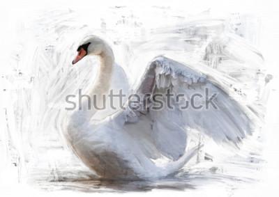 Plakát bílá labuť náčrtek / olej barva malba