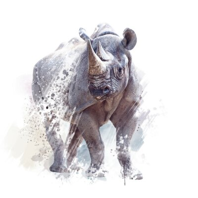 Plakát black rhinoceros watercolor on white background